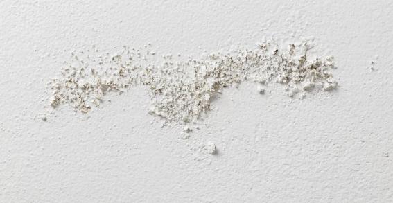 נזק רטיבות בקיר